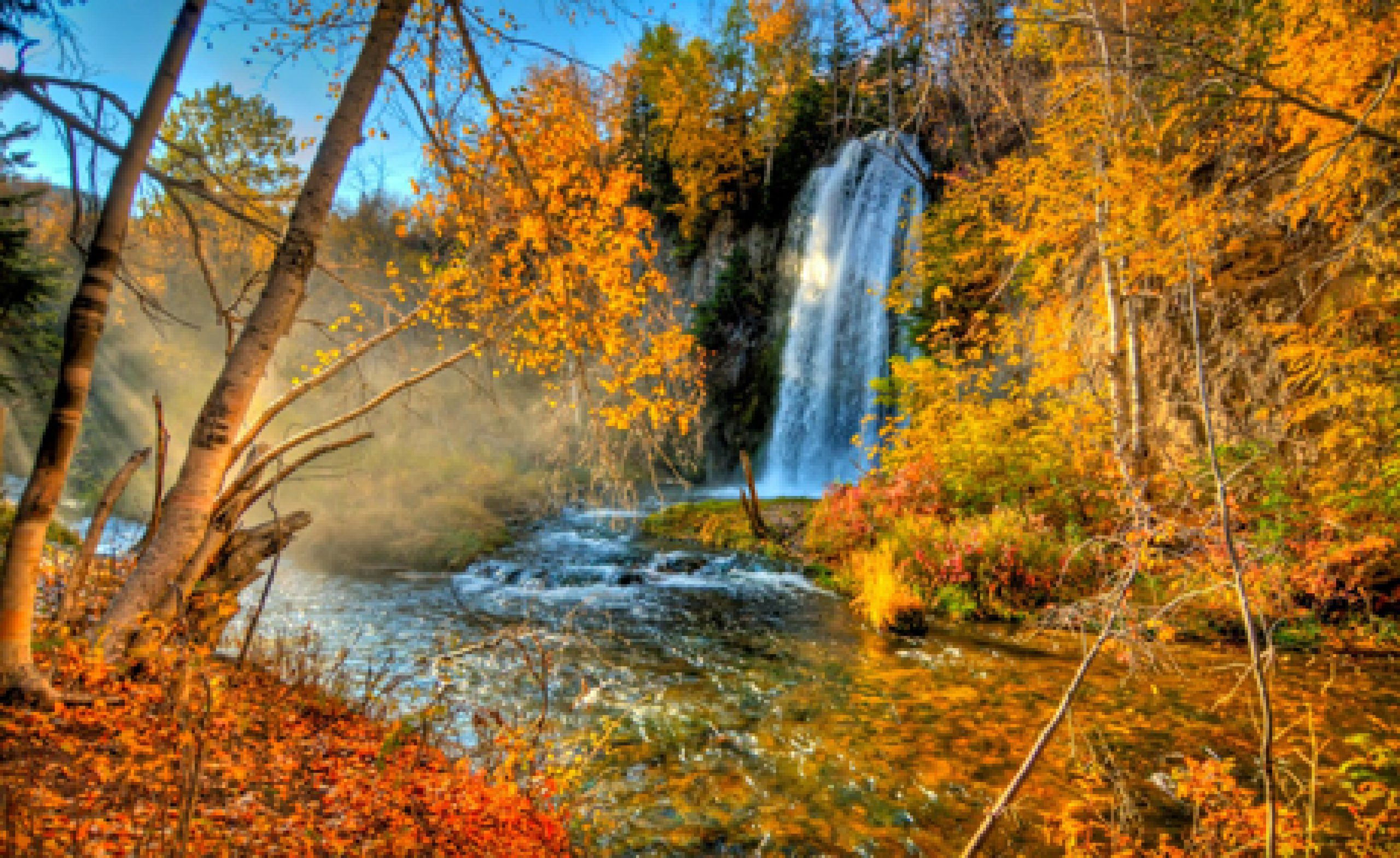 cropped-black_hills_fall_colors_460x300.jpg